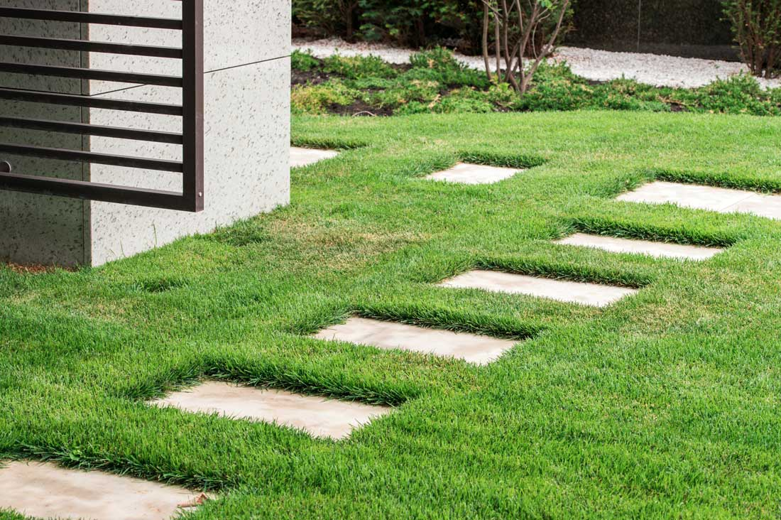 stone paving pathway in lawn