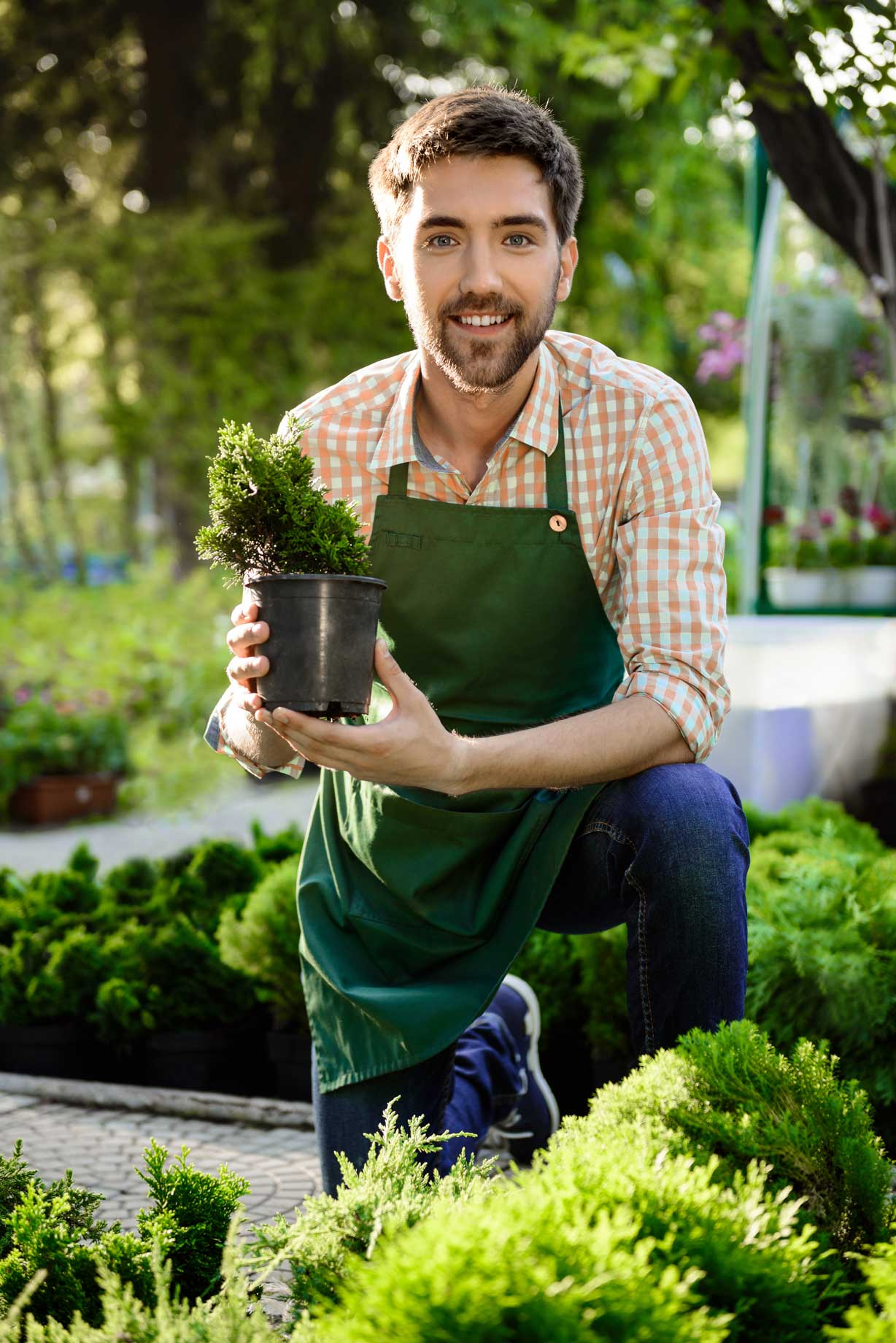 young landscaper holding new plant